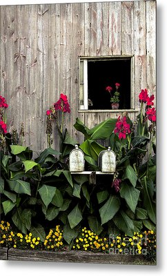 Amish Barn Metal Print by Diane Diederich
