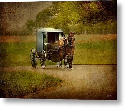 Metal Print featuring the photograph Amish Buggy Ride by Dyle   Warren