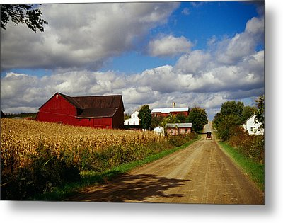 Amish Farm Buildings And Corn Field Metal Print by Panoramic Images