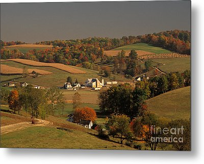 Amish Farm In An Ohio Valley In The Fall Metal Print