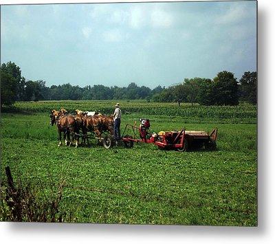 Amish Field Work Metal Print