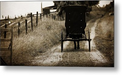 Amish Horse And Buggy Metal Print by Dan Sproul
