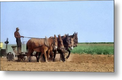 Amish Man Plowing The Fields Metal Print by Dan Sproul