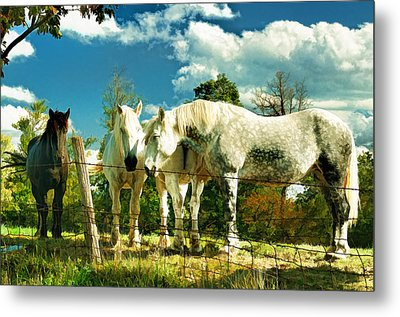 Amish Work Horses Metal Print by Dick Wood