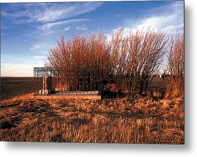Among The Fields Of Barley Metal Print by Terry Reynoldson