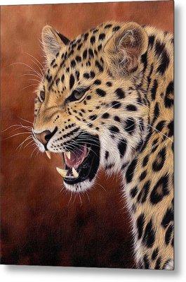 Amur Leopard Painting Metal Print by Rachel Stribbling