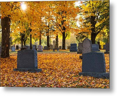 Forest Hill Autumn Light  Metal Print by Mary Amerman