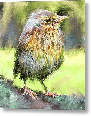 An Early Autumn Bird Metal Print