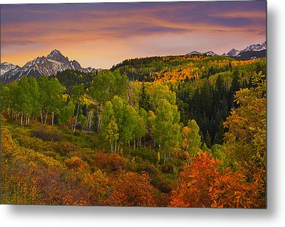 An Early Fall Morning Metal Print by Tim Reaves