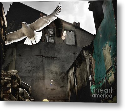 Metal Print featuring the photograph An Unexpected Messenger by Michel Verhoef