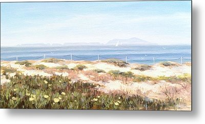 Anacapa Island In The Springtime Metal Print by Tina Obrien