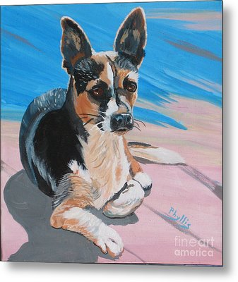 Ancho A Portrait Of A Cute Little Dog Metal Print by Phyllis Kaltenbach