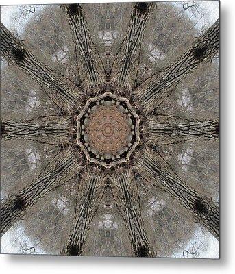 Ancient Cottonwood Metal Print