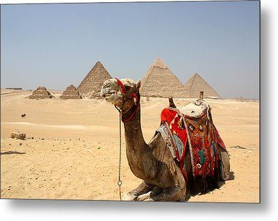Ancient Wonders Metal Print by Laura Hiesinger