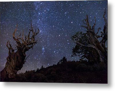 Ancients Metal Print by Cat Connor