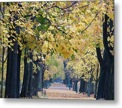 And Autumn Came Metal Print by Janina  Suuronen
