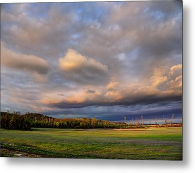And The Earth Now Awakens Metal Print by William Fields