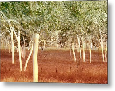 And The Trees Danced Metal Print by Holly Kempe