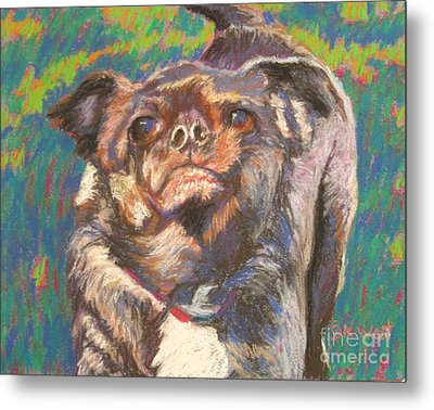 And Your Little Dog Too Metal Print by Katrina West
