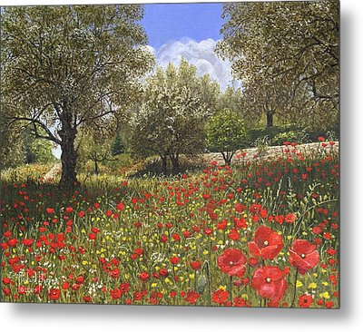 Andalucian Poppies Metal Print by Richard Harpum
