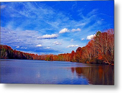 Andrew State Park Lake Metal Print by Andy Lawless