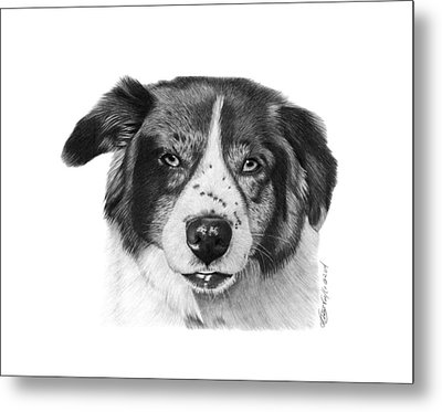Metal Print featuring the photograph Andy - 032 by Abbey Noelle