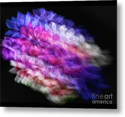 Anemone Abstract Metal Print by Claudia Kuhn