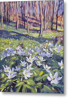 Anemones In The Meadow Metal Print