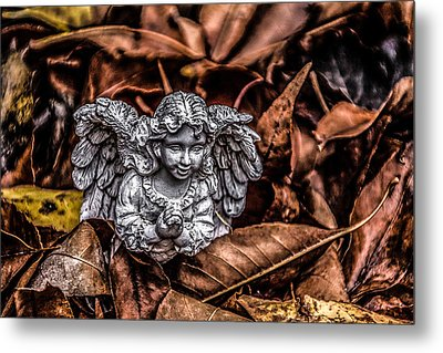 Angel Of Fall Metal Print by Ray Congrove