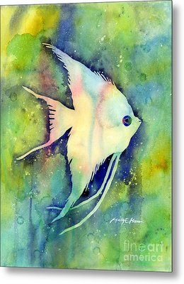 Angelfish I Metal Print by Hailey E Herrera