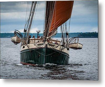 Angelique Bow On Metal Print by Fred LeBlanc