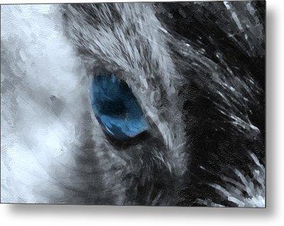 Animal Eye In Blue Metal Print