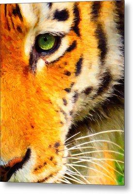 Animal Eye Tiger Metal Print