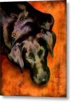 animals- dogs Sleeping Dog Metal Print by Ann Powell