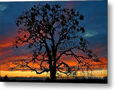 Metal Print featuring the photograph Ankeny Hill Sunset by Nick  Boren