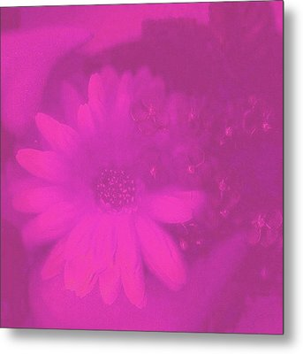 Another Color Suprise Metal Print by Pepita Selles