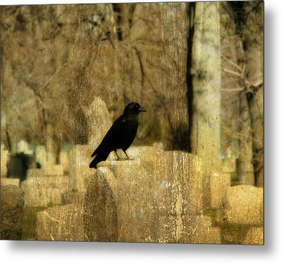 Another Day For Crow In The Graveyard Metal Print by Gothicrow Images