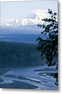 Another Denali View  Metal Print