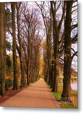 Another View Of The Avenue Of Limes Metal Print