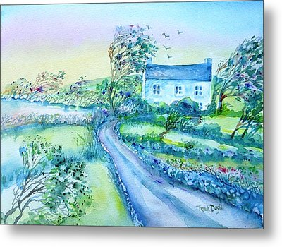 Another Windy Day On Cleare Island Ireland   Metal Print by Trudi Doyle