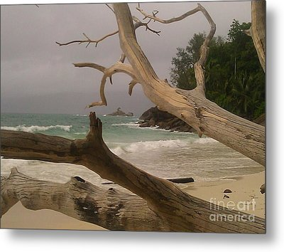 Anse Soleil Beach Metal Print by Ted Williams