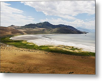 Metal Print featuring the photograph Antelope Island by Belinda Greb