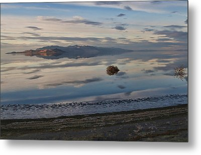 Metal Print featuring the photograph Antelope Island - Lone Tumble Weed by Ely Arsha