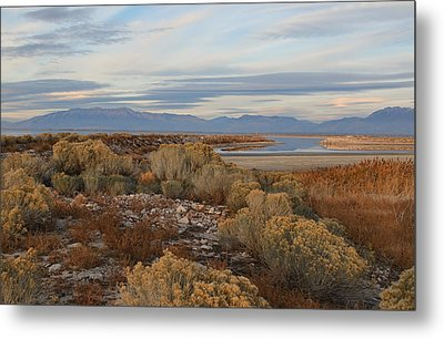 Metal Print featuring the photograph Antelope Island - Scenic View by Ely Arsha