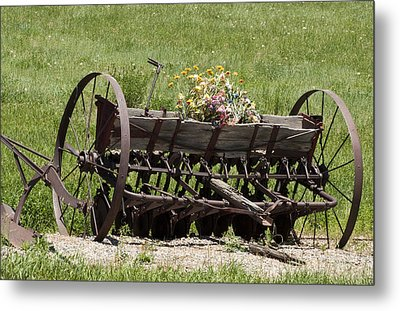 Metal Print featuring the photograph Antique Horse Drawn Seeder by Daniel Hebard