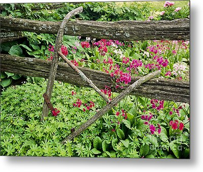 Metal Print featuring the photograph Antique Plow Handles by Alan L Graham