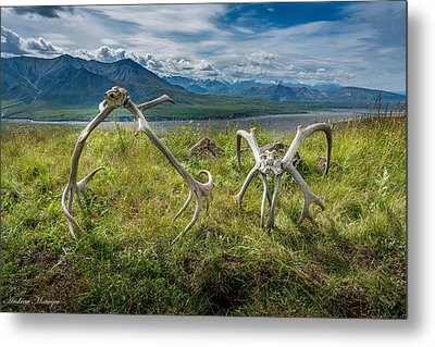 Antlers On The Hill Metal Print