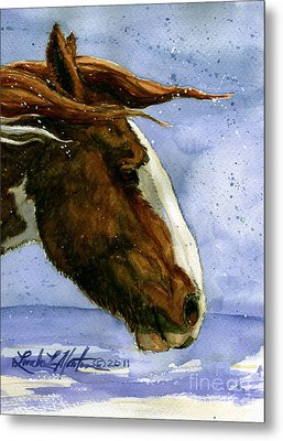 Apache Bachelor Stallion Of Sand Wash Basin Metal Print