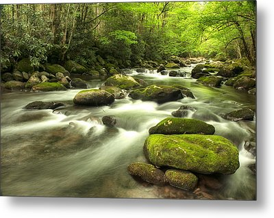 Appalachian Spring Stream Metal Print by Phyllis Peterson