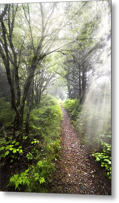 Appalachian Trail Metal Print